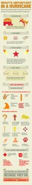 hurricane sandy infograph, hurricane sandy infographic, hurricane infograph